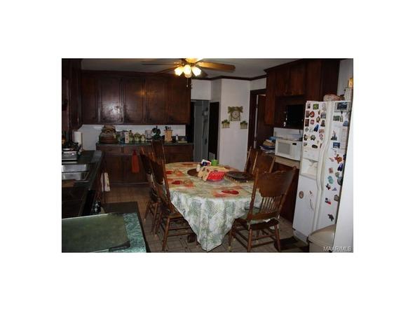 4781 Pettus Rd., Letohatchee, AL 36047 Photo 3