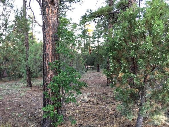 300 W. Creekwood Ln., Show Low, AZ 85901 Photo 8