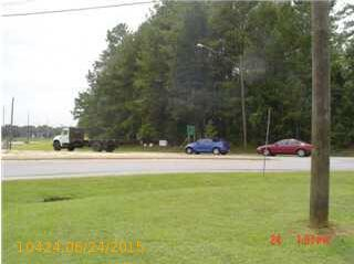2335 19th St., Pell City, AL 35128 Photo 1