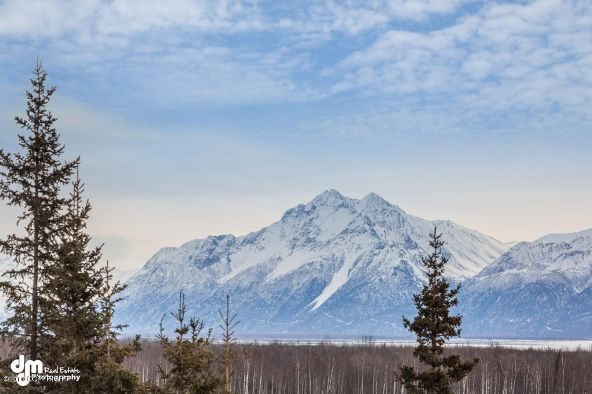 3800 S. Country Dr., Wasilla, AK 99623 Photo 6