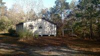 Home for sale: 1055 Crabwalk Ln., Townsend, GA 31331
