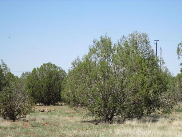 3328 N. Hillside Rd., Ash Fork, AZ 86320 Photo 60