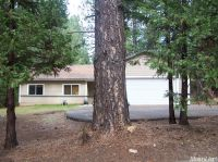 Home for sale: 5164 Wooded Glen Rd., Grizzly Flats, CA 95636