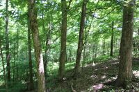 Home for sale: Lot # 4 Mitchell Ln., Mount Eden, KY 40046