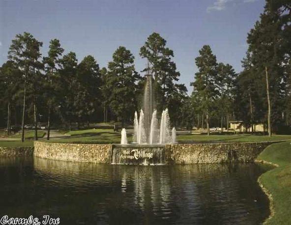 22 Recinto Way, Hot Springs Village, AR 71909 Photo 3