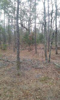 Home for sale: Lot 30 Oak Ridge Trails, Big Sandy, TX 75755
