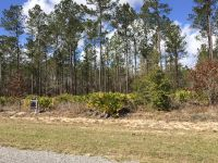 Home for sale: Lot 67 Mount Pleasant Rd., Hortense, GA 31543