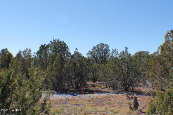 8 Acres Off Of Acr N. 3114, Vernon, AZ 85940 Photo 17