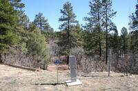 Home for sale: Black Bear 3, Ticonderoga, The Forks Raod, Chama, NM 87520