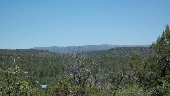 509 N. Chaparral Pines Dr., Payson, AZ 85541 Photo 12