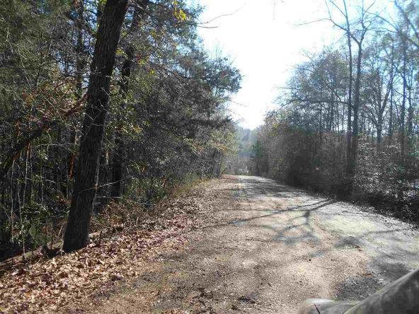 16.9 Acres Private Rd. 1363, Ariton, AL 36311 Photo 3