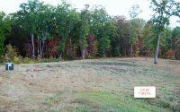 Home for sale: Lt22 Jack Groves Ln., Hayesville, NC 28904