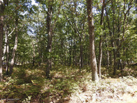 Home for sale: Lot 3119 Snow Mass Rd., Henryville, PA 18332
