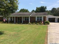 Home for sale: 187 Plunkett Dr., Horton, AL 35980