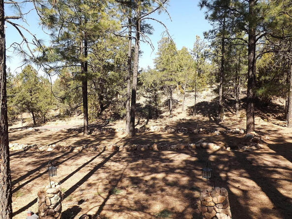 3655 Enchanted Forest Dr., Overgaard, AZ 85933 Photo 8