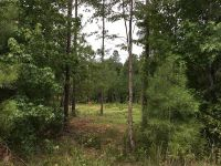 Home for sale: Lot 11 Oak Ridge Dr., Waverly Hall, GA 31831
