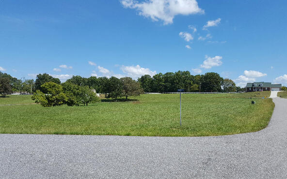 Lot27 Jewell Mason, Blairsville, GA 30512 Photo 11