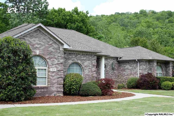 318 Broad Armstrong Dr., Brownsboro, AL 35741 Photo 29