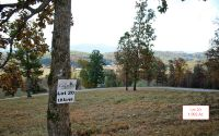 Home for sale: Lt20 Jack Groves Ln., Hayesville, NC 28904