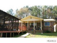 Home for sale: 97 Co Rd. 955, Crane Hill, AL 35053