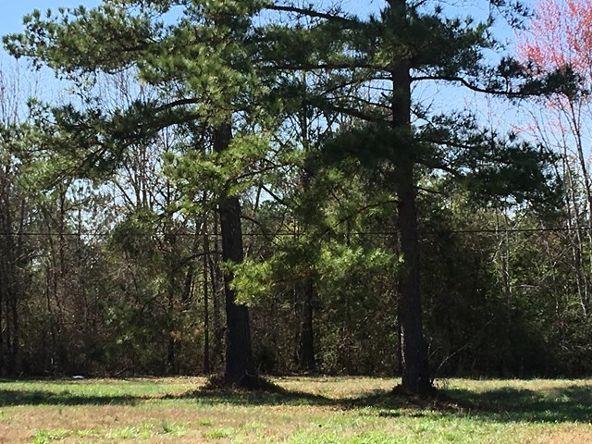 12 Deer Run Cr, Rogersville, AL 35652 Photo 3