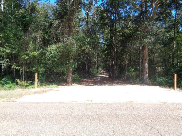 31.2 Ac Johnny Murphy Rd., Dothan, AL 36301 Photo 34