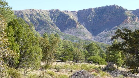 220 W. Zane Grey Cir., Christopher Creek, AZ 85541 Photo 53