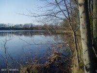 Home for sale: 59362 Washburn Lake Ln., Colon, MI 49040