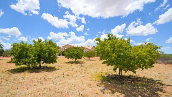 3920 S. Moson Rd., Sierra Vista, AZ 85650 Photo 11