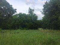 Home for sale: 1711 Bois D'Arc, Tyler, TX 75702