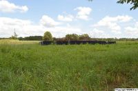 Home for sale: 21386 Colwell Rd., Toney, AL 35773