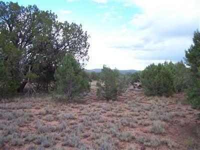 1805 W. Cumberland Parcel J Rd., Ash Fork, AZ 86320 Photo 19