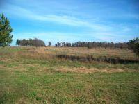 Home for sale: 0 North Farm Rd. 129, Willard, MO 65781