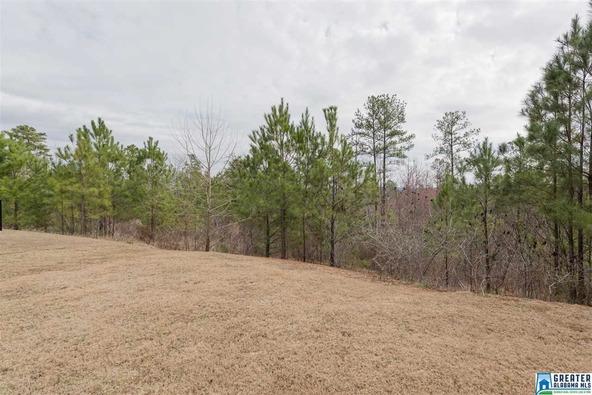 115 Lakeridge Dr., Trussville, AL 35173 Photo 49