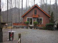 Home for sale: 215 Byrd Mountain Estates Rd., Burnsville, NC 28714