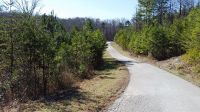 Home for sale: 0-Lot 16 Evergreen Dr., Stanton, KY 40380