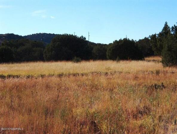 130 Bunny View, Ash Fork, AZ 86320 Photo 9