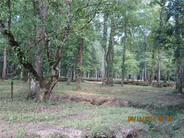 1865 County Rd. 99, Gaylesville, AL 35973 Photo 27