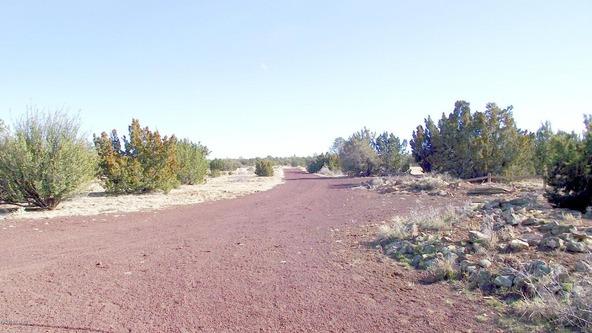 10922 S. High Mesa Trail, Williams, AZ 86046 Photo 21