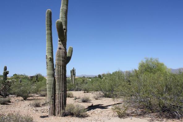 7670 N. Invergordon Rd., Paradise Valley, AZ 85253 Photo 6