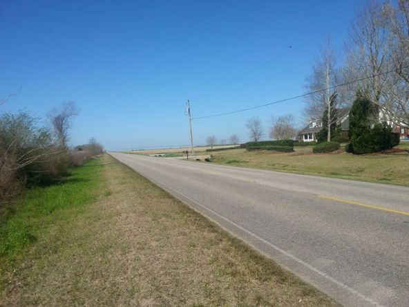17324 County Rd. 12, Foley, AL 36535 Photo 3