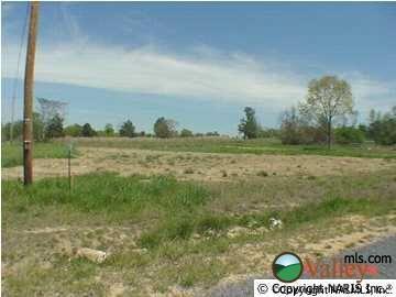 County Rd. 1009, Fort Payne, AL 35968 Photo 1