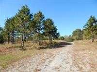 Home for sale: 0000 Johnson Ridge Rd., Elkin, NC 28621