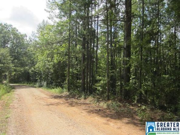3.73 Acres Thomas Ln., Ashland, AL 36251 Photo 2