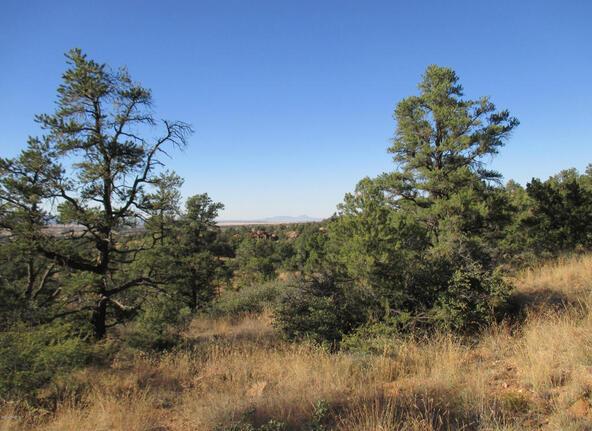16301 N. Petroglyph, Prescott, AZ 86305 Photo 13
