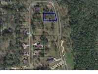 Home for sale: 23 Charlie Gaskin Dr., Wewahitchka, FL 32465