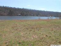 Home for sale: Holiday Estates Rd., Ashville, AL 35953