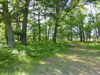 Home for sale: 12.5 Ac County Rd. Db, Mosinee, WI 54455