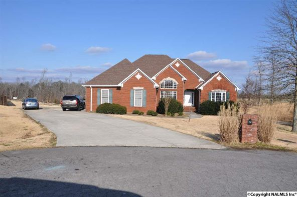 349 Givake Dr., Arab, AL 35016 Photo 3