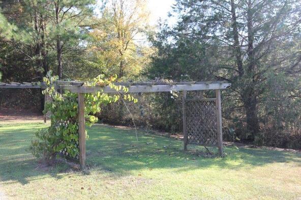 1135 Greasy Cove Rd. S.W., Eva, AL 35651 Photo 12
